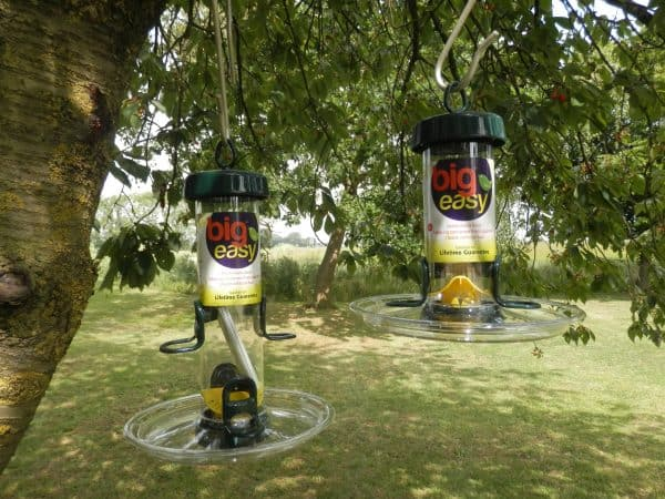 Big Easy bird seed feeder