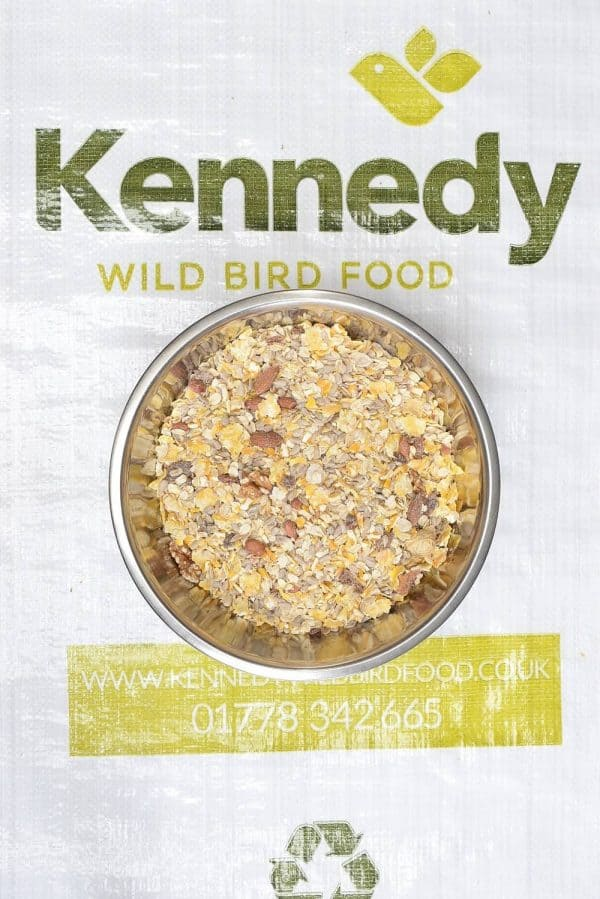 Ground food bird seed