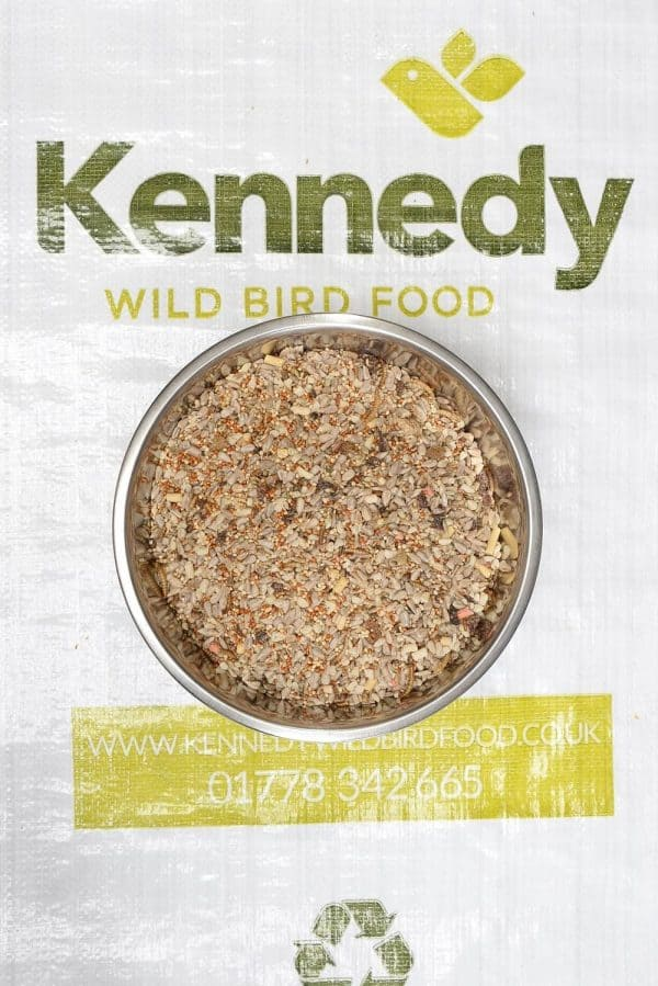 Insect mix bird seed