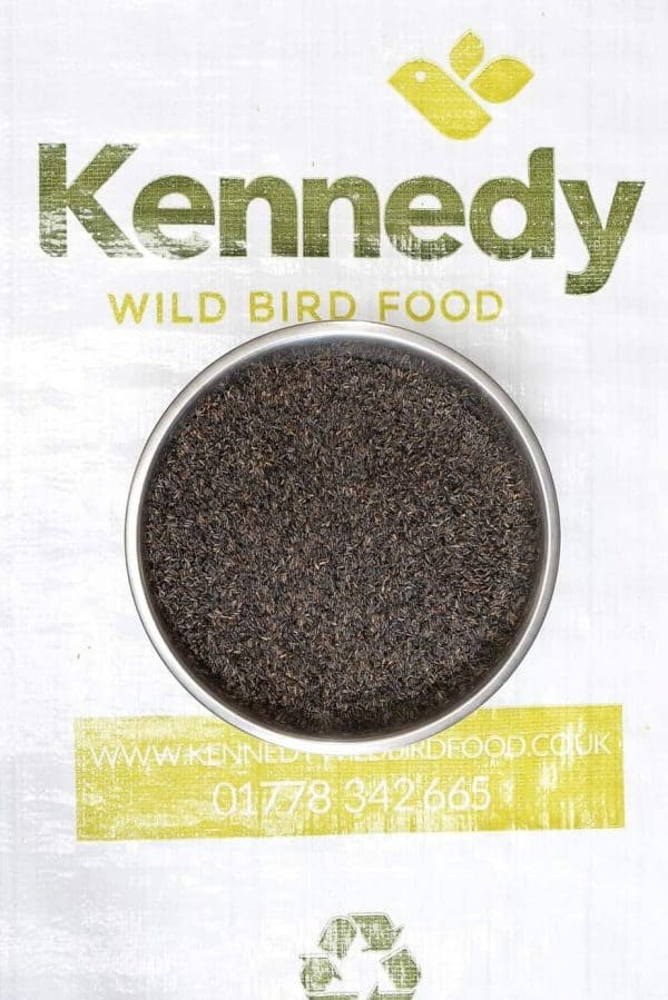 Niger seed bird food