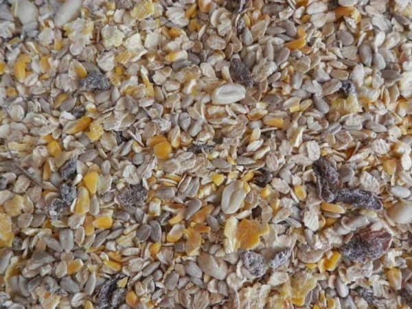 Ground feed mixture bird feed