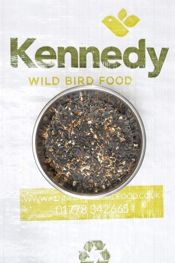 Premium finch bird food