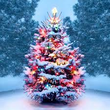 This image has an empty alt attribute; its file name is christmas-1.jpg