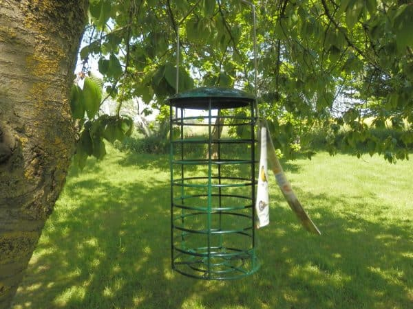 large fat ball feeder for birds
