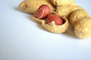 are peanuts good for wildlife